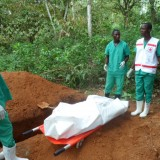 The missing link in the fight against Ebola
